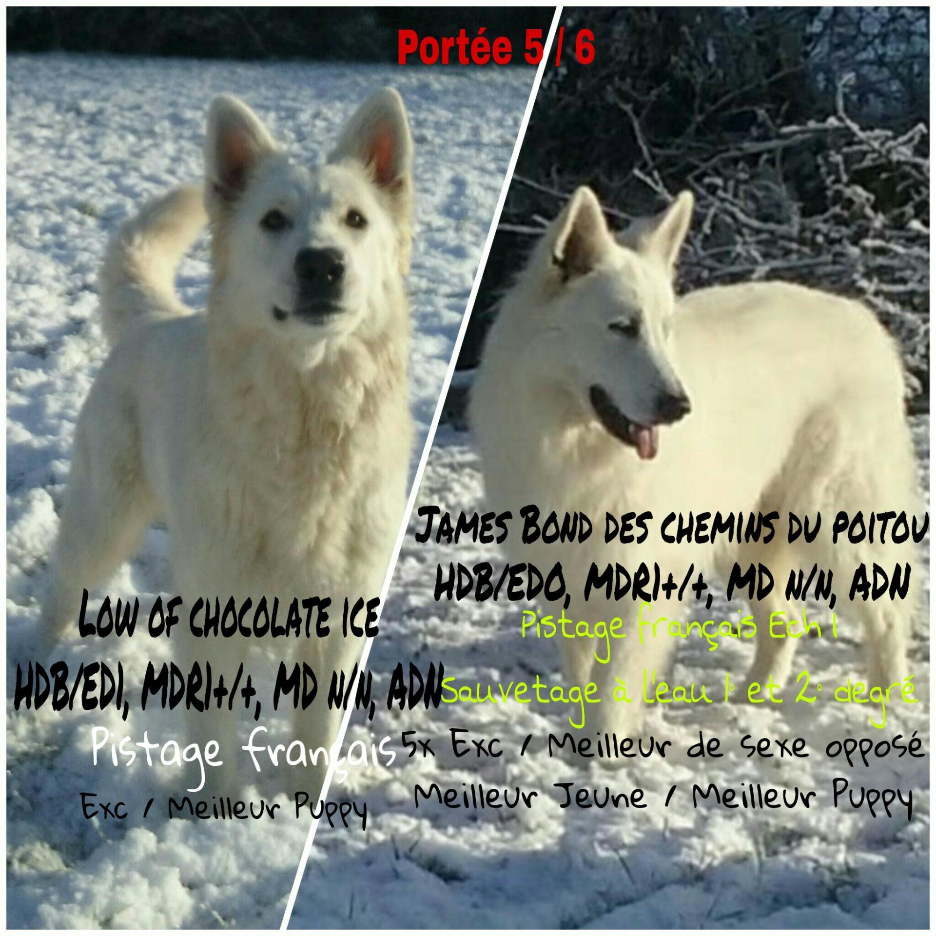 Picsart 01 27 08 50 12